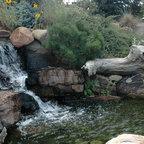Backyard Aquatic Paradise Eclectic Landscape New