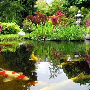 Стильный дизайн: большой весенний участок и сад на заднем дворе в классическом стиле с прудом и полуденной тенью - последний тренд