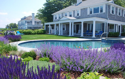 Garden Color: How to Landscape With Purple