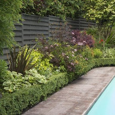 Eclectic Pool by CYAN Horticulture