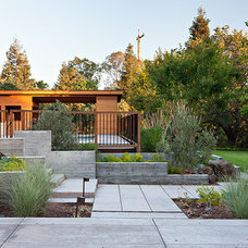 Contemporary Landscape by Klopf Architecture