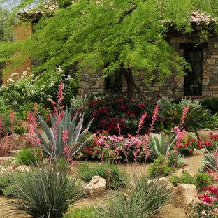 Red Yucca Flower Hesperaloe Landscaping Ideas Houzz