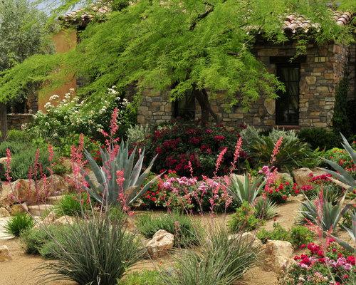 Desert Landscape Front Yard Houzz