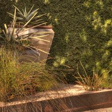 Contemporary Landscape by D-CRAIN Design and Construction