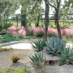 Diseño de jardín de secano, minimalista, con gravilla