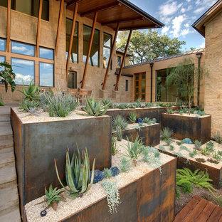 Mediterraner Hanggarten mit direkter Sonneneinstrahlung, Betonplatten und Wüstengarten in Austin