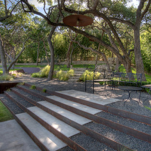 Contemporary garden in Austin.