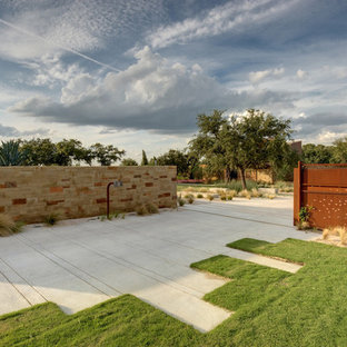 Inspiration for a modern front driveway garden in Austin.