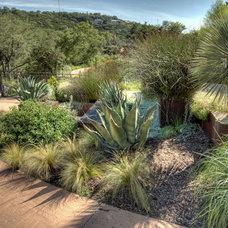 Mediterranean Landscape by D-CRAIN Design and Construction