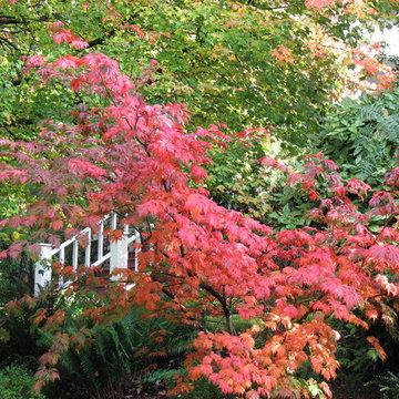 Portland Hillside Bungalow