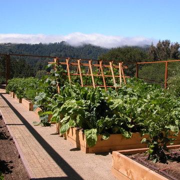 Portola Valley Kitchen Garden