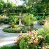 After-Summer Care for a Fabulous Fall Garden