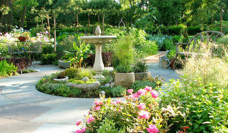Beginner's Guide to Bird-Friendly Gardens