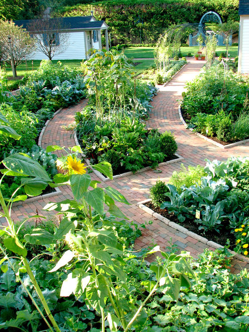 photo of a traditional vegetable garden landscape in chicago - Flower And Vegetable Garden Ideas