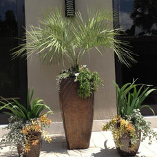Tropical Landscape by Details Garden Design