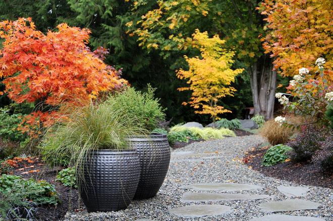 Contemporary Garden by Bliss Garden Design