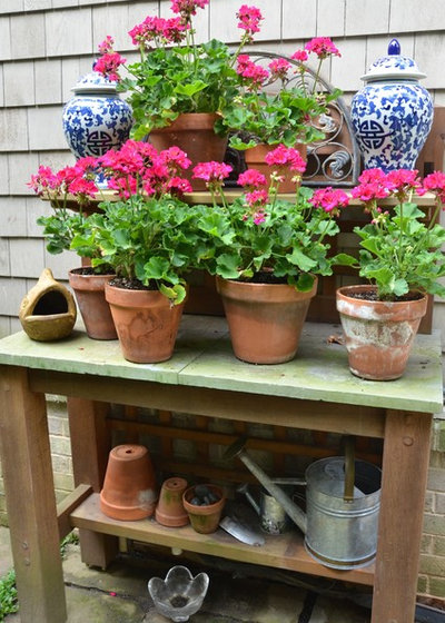 Traditional Garden by Planters