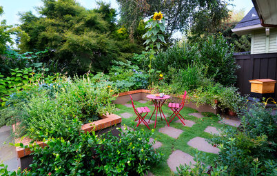How to Enjoy Your Garden More This Summer