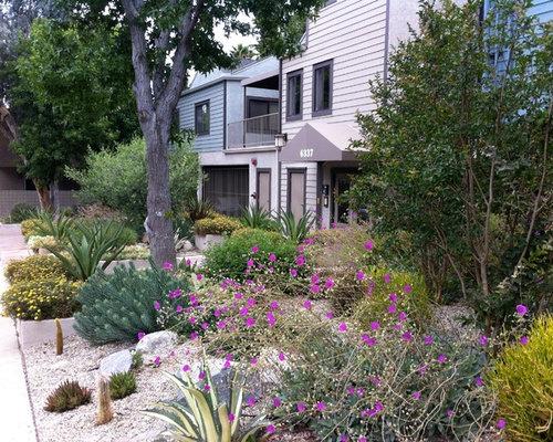 Tropical drought tolerant landscape ideas designs for Landscaping rocks broward county