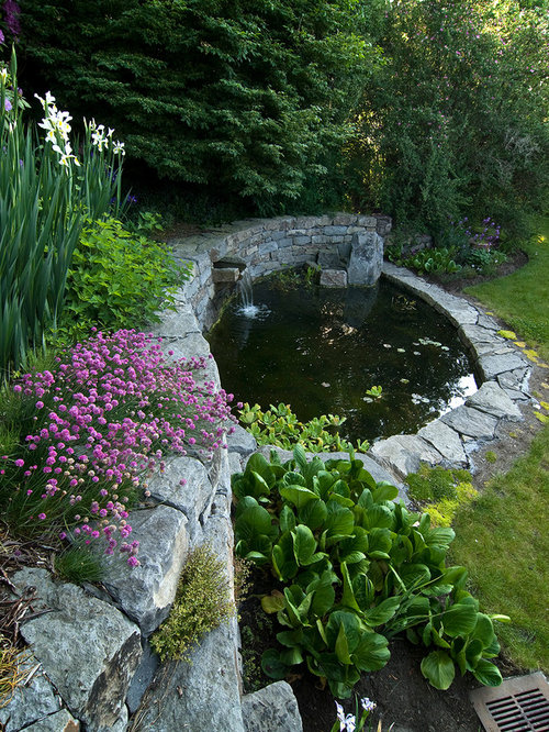 Backyard Pond Houzz