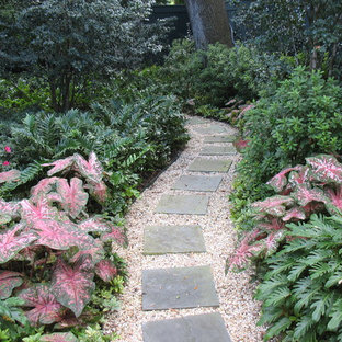Design ideas for a traditional landscaping in New Orleans.