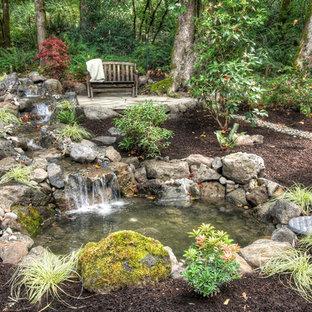 Exemple d'un jardin montagne avec une cascade.