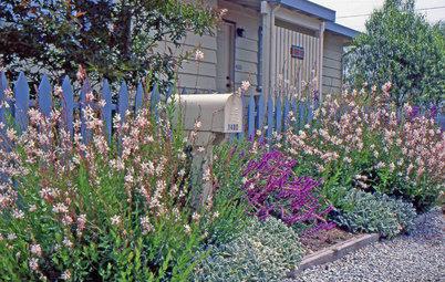 Lay of the Landscape: Coastal Garden Style