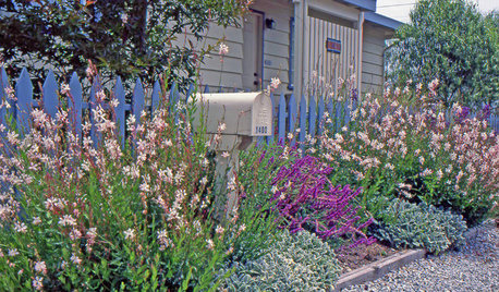 Lay of the Landscape: Coastal Garden Style