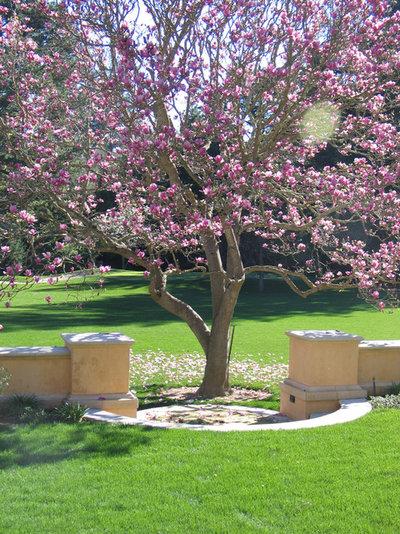 Klassisch Garten by Zeterre Landscape Architecture