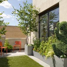 Contemporary Landscape by Evan C Lai Landscape Design Inc