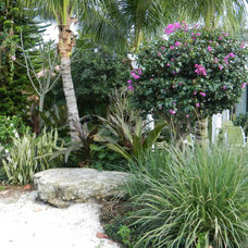 Traditional Landscape by Pro Gardens and Friends Landscaping Inc.