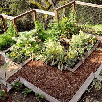 Production Garden
