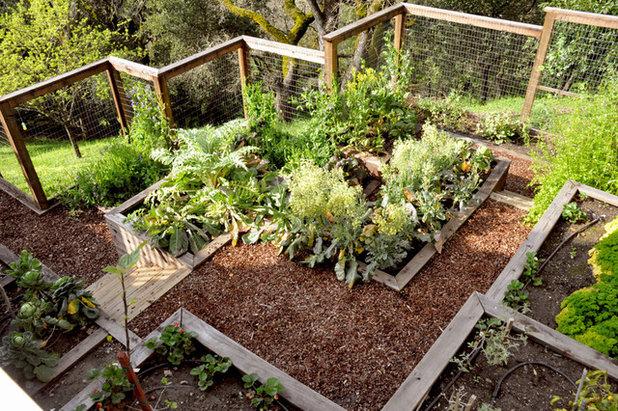 トラディショナル 庭 by Arterra Landscape Architects