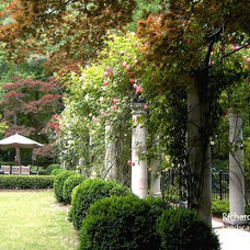 Traditional Landscape by Richard Anderson Landscape Architect