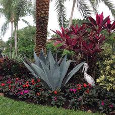 Tropical Landscape by Eileen G Designs