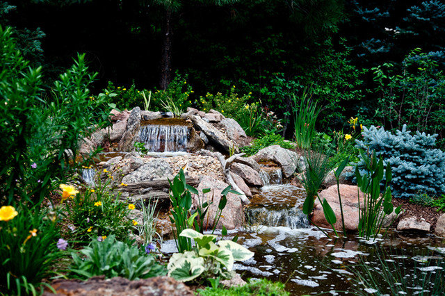 Eclectic Landscape by Inscape Outdoor Design