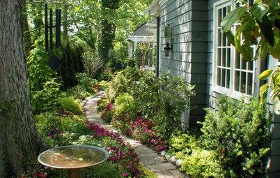 9 conseils de pro pour apprivoiser les zones d'ombre du jardin