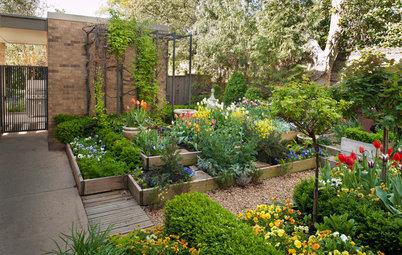 Gewusst wie: Kräutergarten anlegen und abwechslungsreich bepflanzen