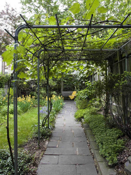 Grape vine trellis ideas houzz for Contemporary garden trellis designs