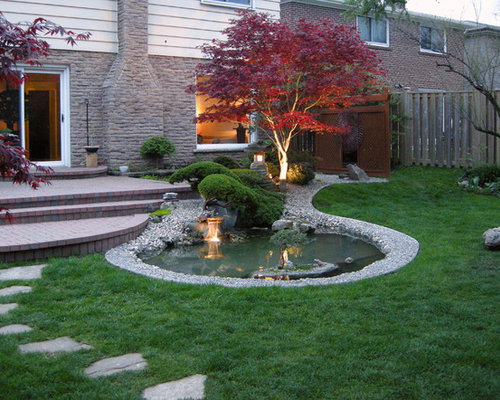 Fireglow Japanese Maple Home Design Ideas Pictures