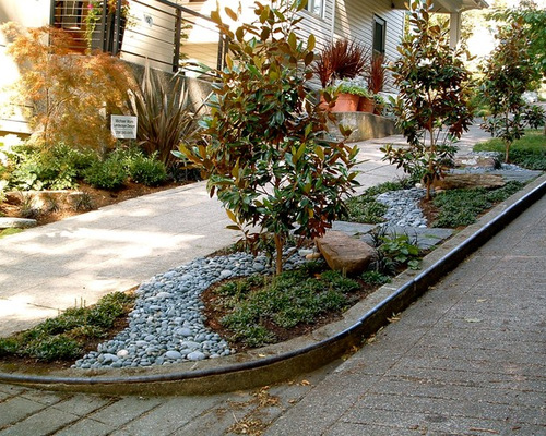 SaveEmail  Michael Muro Garden Design. Small Front Yard Landscape Ideas  Designs  Remodels   Photos