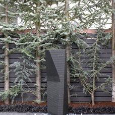 Modern Landscape by Berger Partnership