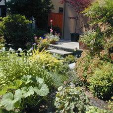 Eclectic Landscape by Plan-it Earth Design