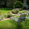 How to Design a Rain Garden That Loves Stormy Weather