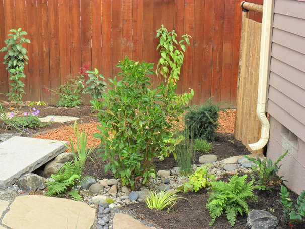 10 Solutions for Soggy Soil on Landscaping Ideas For Wet Backyard id=32508