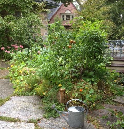 Victorian Courtyard Landscape Design Ideas Remodels Photos