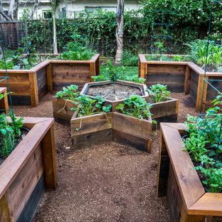 Inredning av en klassisk liten trädgård i full sol på våren, med en köksträdgård