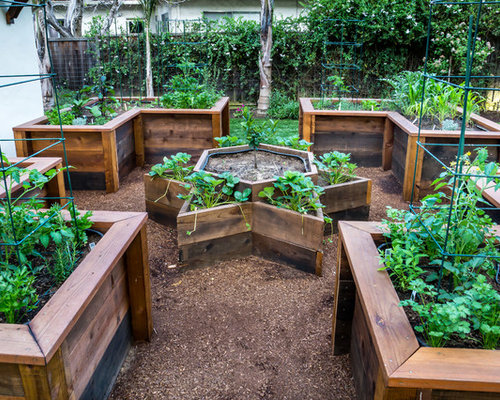 Raised Bed Vegetable Garden Design Ideas & Remodel Pictures | Houzz