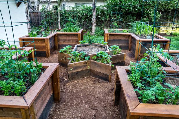 Klassisch Garten by Casa Smith Designs, LLC