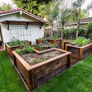 Réalisation d'un petit jardin arrière tradition au printemps avec des pavés en brique et une exposition ensoleillée.